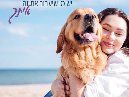 אנחנו רוצים לספר לכם קצת על כלבים טיפוליים: