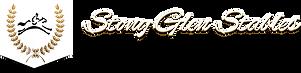 stony-glen-stables-logo.png