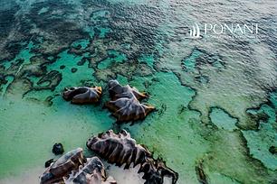 9D The Essential Seychelles | 05Jan & 25 Jan 2021 | SOLO TRAVELER OFFER