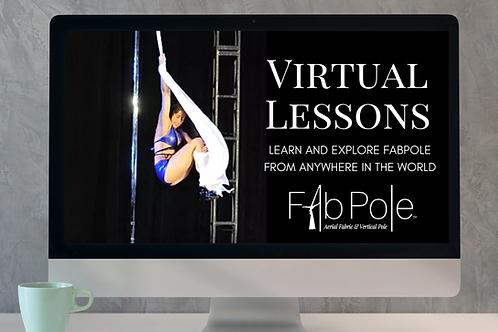 Virtual Lesson 1hr
