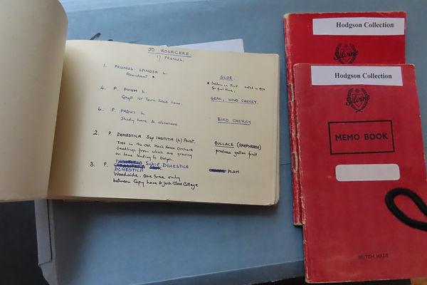 Hodgson Collection 1950 botanical notes