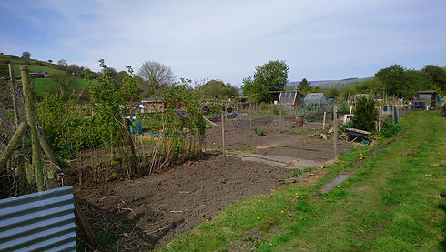 Cononley Allotments - Dug over ready for planting