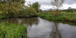 Cononley-Deadeye-Pond-3