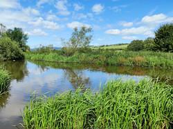 Deadeye pond 5