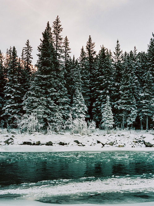Bow River - Canmore, Canada