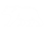 BearVector2.png
