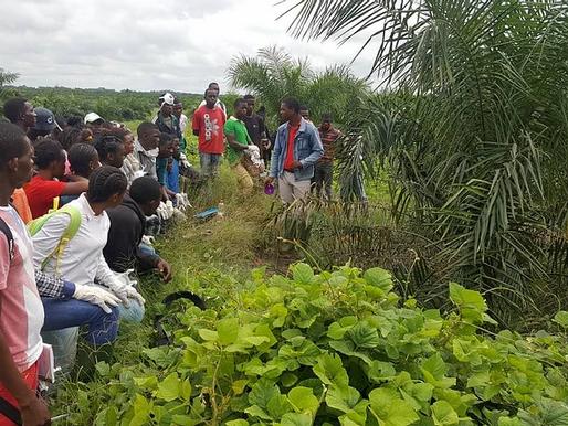 Programme AFIP-Mouila : début des formations pratiques