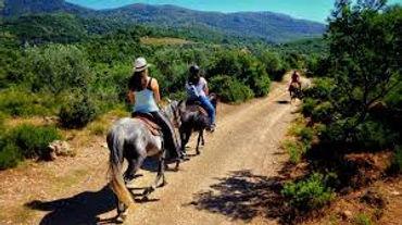 horse riding Pelion01.jpg