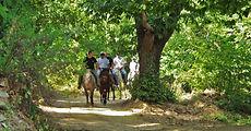 horse riding Pelion02.jpg