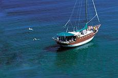 Boat tripls.jpg