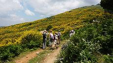 baner hiking.jpg