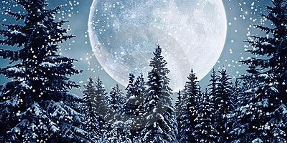 Winter Solstice Scene NIGHTTIME