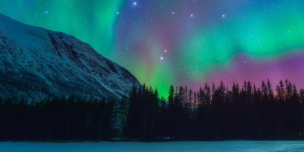 Northern Lights in Winter II