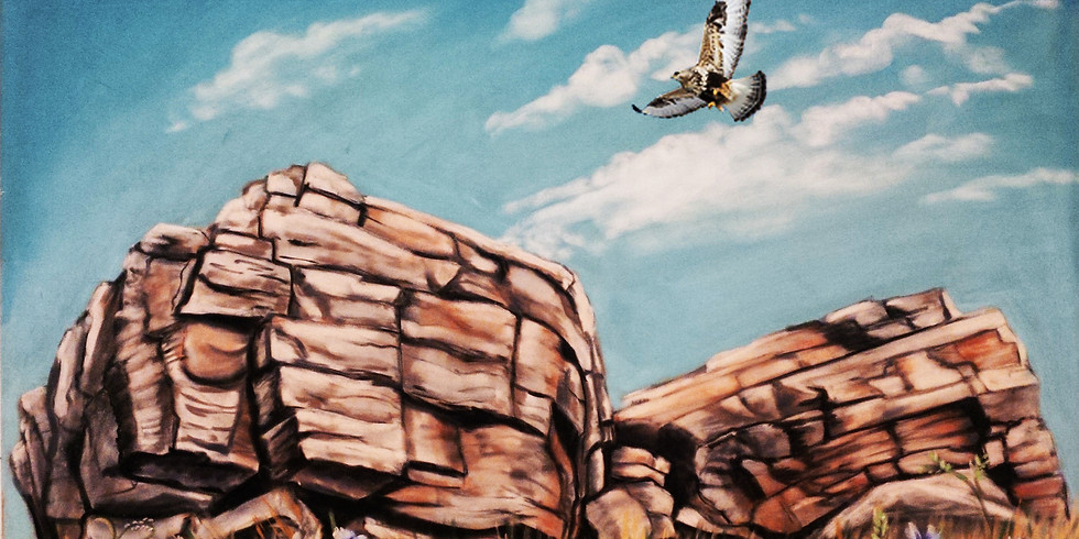 Hawks Over Big Rock