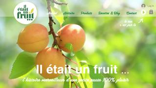 Il était un fruit ... Découvrez le dernier site web créé par Step'com