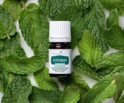 Peppermint Vitality Essential Oil 5ml