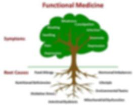 FM Tree.jpg