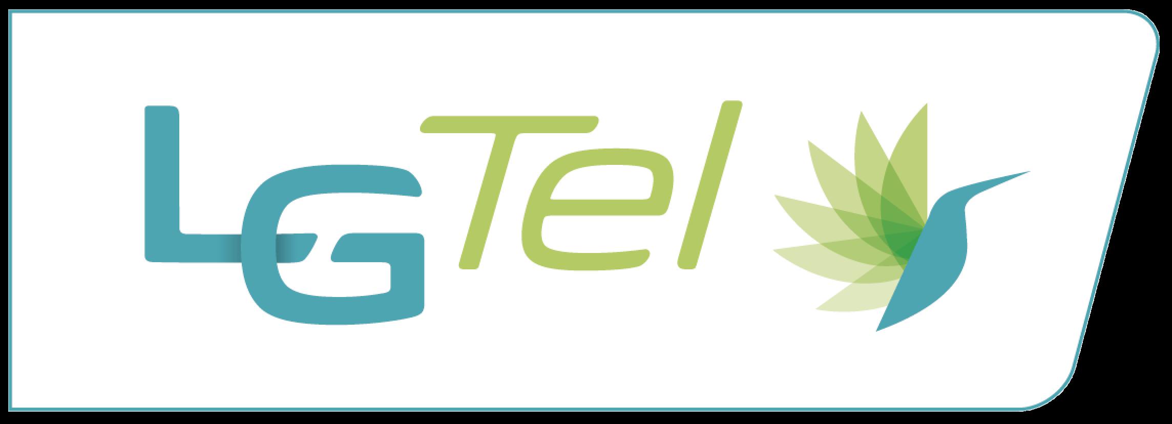 Logo LG Tel Rectangle