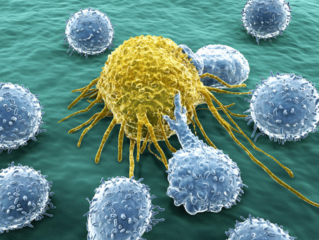 Combine group's integrated bioinformatics pipeline predicts the response of human immune system