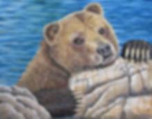 Drizzly Bear .jpg