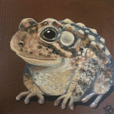 "SOLD -""Hoppy Toad"""