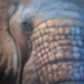 Sovereign (Elephant) Print Image.jpg