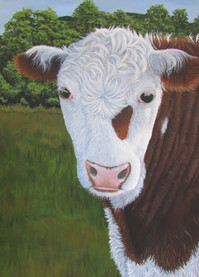 SOLD Bovine Beauty Print Image.jpg