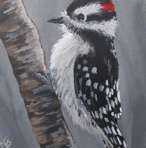 SOLD - Chubby Downy Woodpecker
