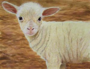 SOLD - Spring Lamb