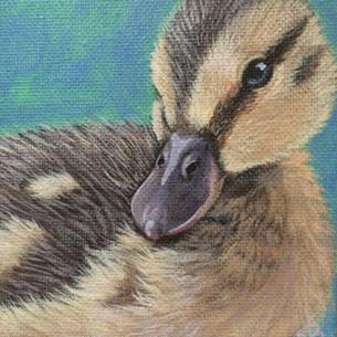 """Tiny Duckling"""