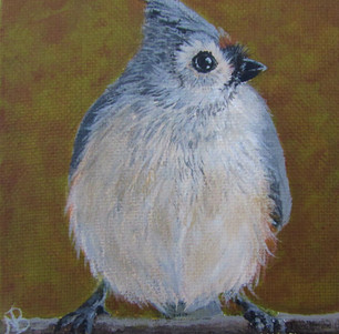 SOLD - Chubby Tufted Titmouse