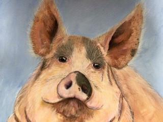 Devine Swine