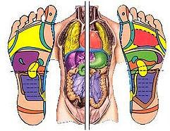 corps-pieds.jpg