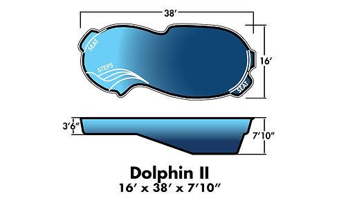 dolphin2 (1).jpg