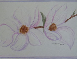 Pair of Mangolia Flowers 2013