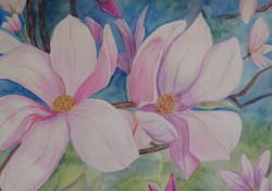 SOLD Mangolia Flowers