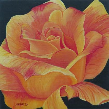Yellow Rose, 2017.JPG