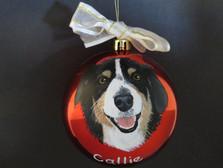 Callie, 2018