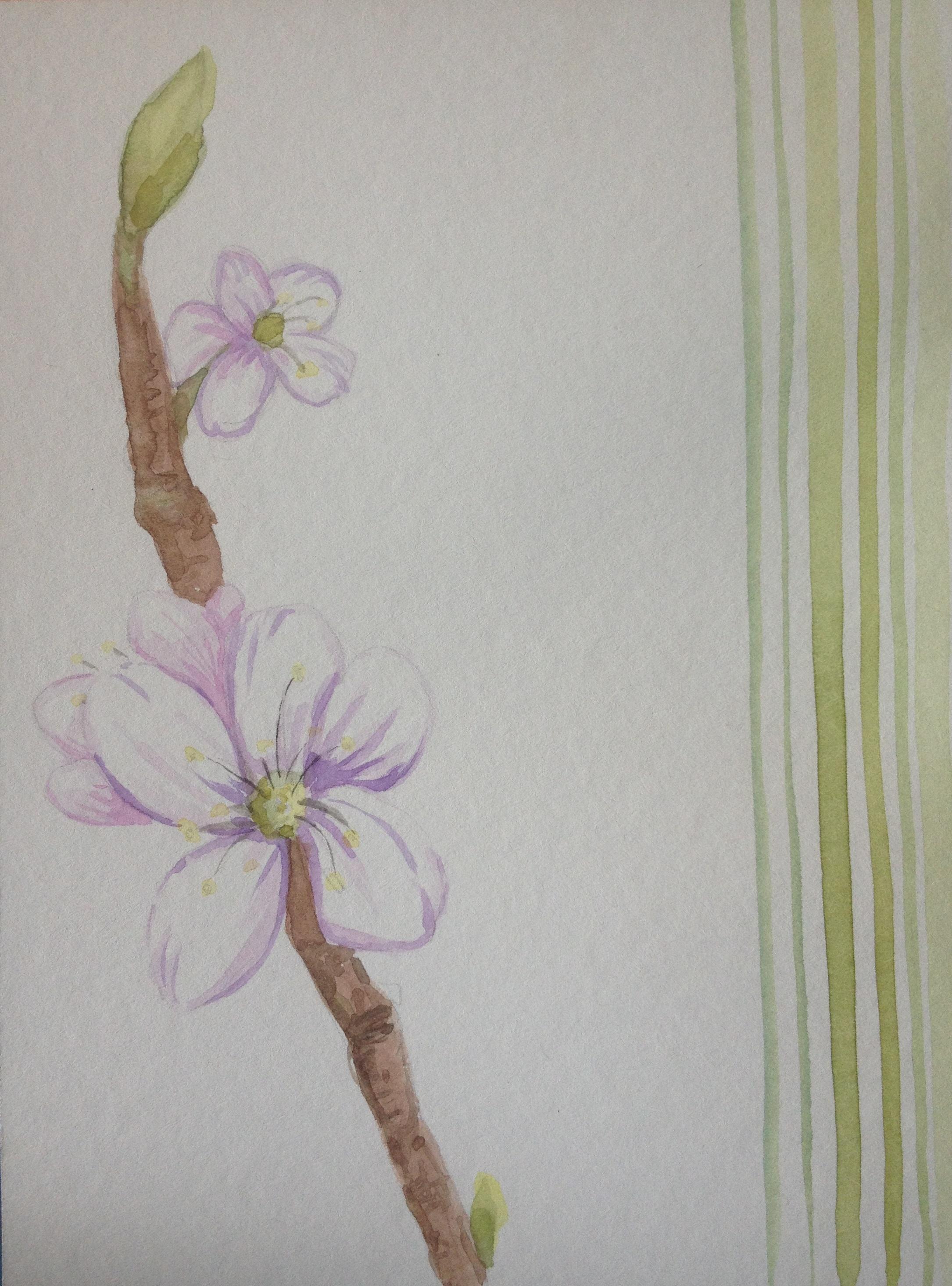 Spring Bloom Pt 1
