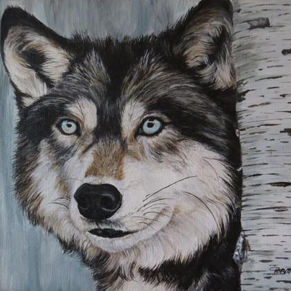 Grey Wolf 2014.jpg