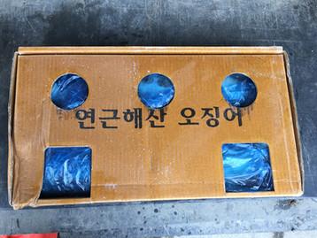연안오징어의 가격상승.