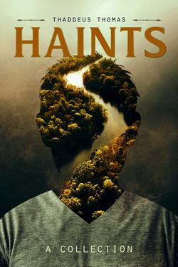 Haints-6x9