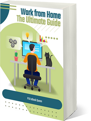 Work at Home Ultimate guide