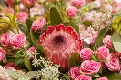 Protea, Spray Roses, Gillyflower