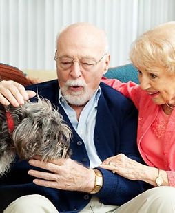 pet-therapy-for-the-elderly-750x500.jpg