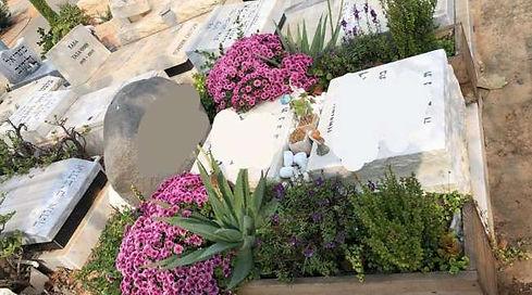 ערוגות עץ עם המון פרחים צבעוניים סביב מצבה.jpeg