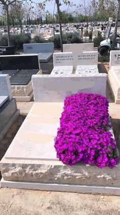 פרחים ורודים לצד המצבה.jpeg