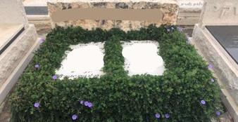 גינת עלים ירוקים סביבה מצבת אבן.jpeg