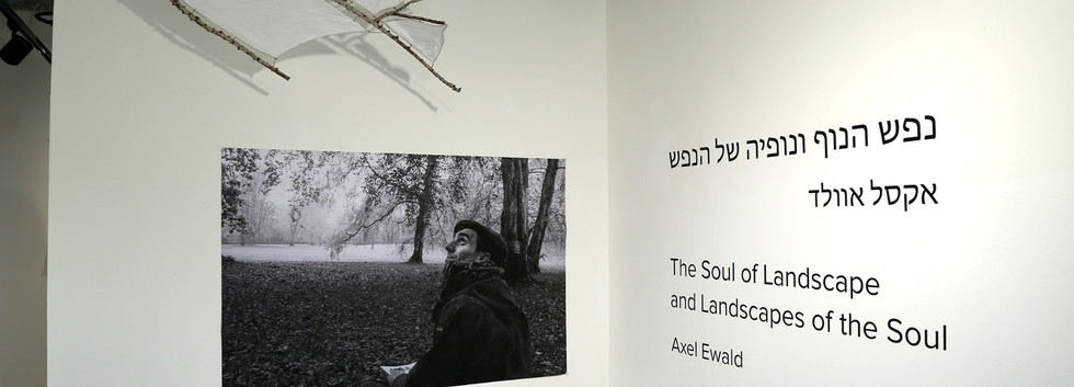 """התערוכה """"נפש הנוף ונופיה של הנפש"""" יחיד\ אקסל אוולד"""