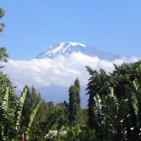 Kilimanjaro (2008, Tanzania)